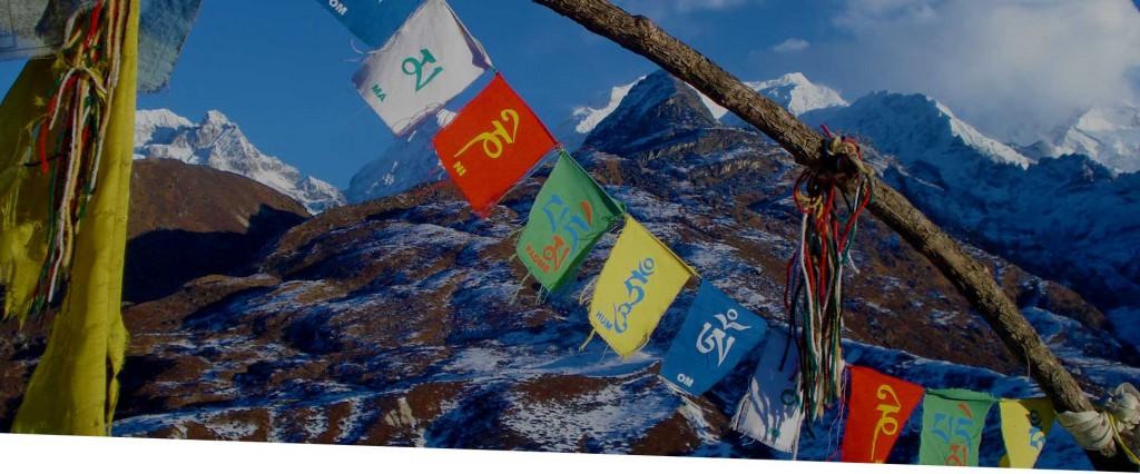 CD_Header-Photos_India
