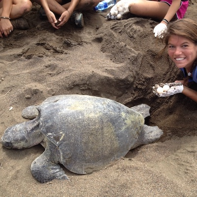 sea turtle conservation with student holding turtle eggs